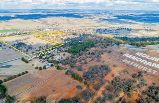 Picture of 448 Conrod Straight, Mount Panorama NSW 2795