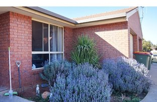 Picture of 7 & 8 / 104 Garden Ave, Narromine NSW 2821