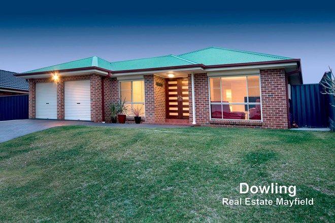 Picture of 24 Eucalyptus Circuit, WARABROOK NSW 2304