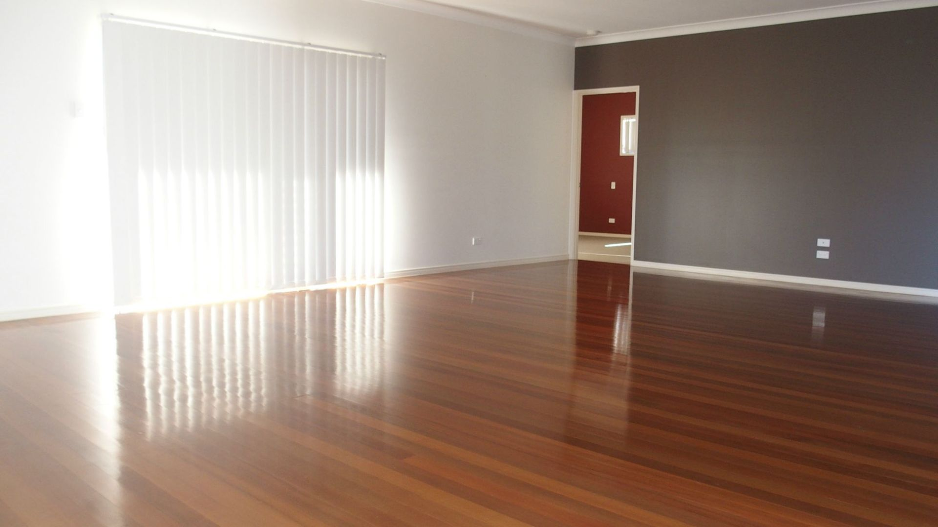 3 Ripon Street, Coorparoo QLD 4151, Image 2