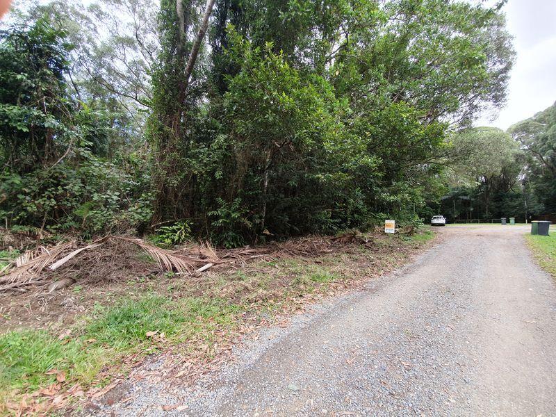 18 Thornton Peak Drive, Daintree QLD 4873, Image 2