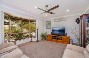 Picture of 17 Honeymyrtle Drive, Banora Point NSW 2486