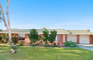 Picture of 1 O'Reilly Place, Pottsville NSW 2489