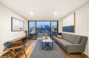 Picture of 39/217 Northbourne Avenue, Turner ACT 2612