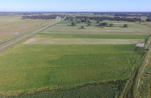 Picture of 8500 Murray Valley Hwy, Echuca VIC 3564