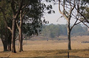 Picture of - Mount Marsh Road, Whiporie NSW 2469