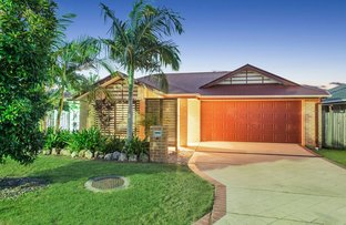 Picture of 4 Moorhen Street, Coomera QLD 4209
