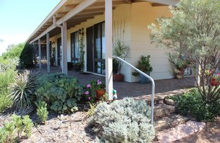 Picture of 59 Stacy St, Dowerin WA 6461