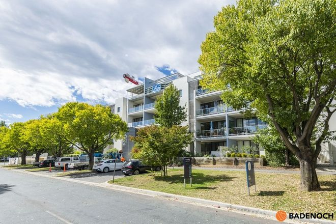 Picture of 5/10 Burke Crescent, KINGSTON ACT 2604