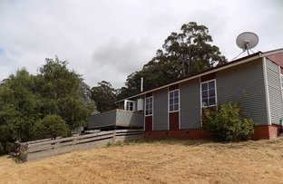 Picture of 148 Lower Swamp Road, Lachlan TAS 7140