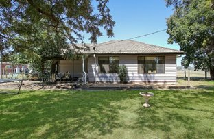 Picture of 168 Racecourse Road, Benalla VIC 3672