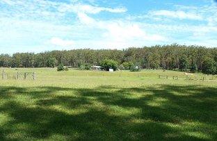 Picture of 484 Blackbutt Road, Herons Creek NSW 2443