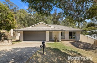 Picture of 13 Currawong Crescent, Upper Coomera QLD 4209
