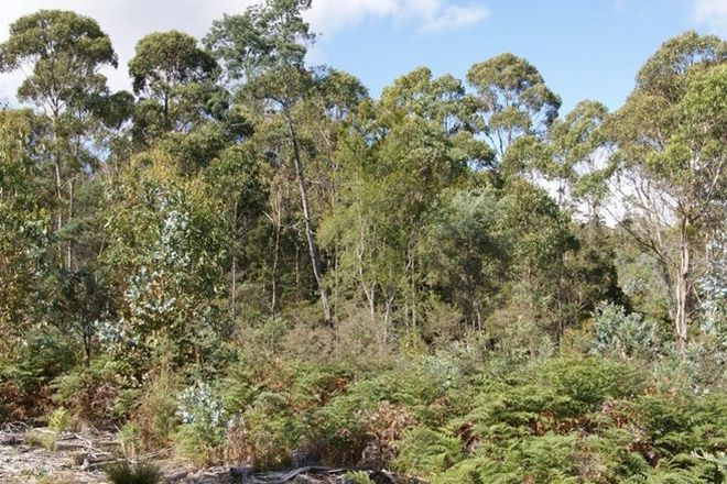 Picture of Lot 2 English Town Road, EVANDALE TAS 7212