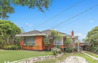 Picture of 17 Wadham Parade, Mount Waverley VIC 3149