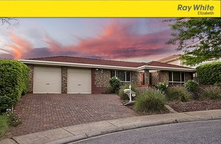 6 Mildren Court, Greenwith SA 5125