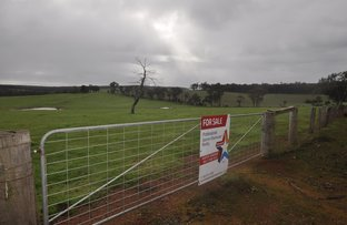 Picture of Lot 11724 JUNCTION ROAD, Manjimup WA 6258