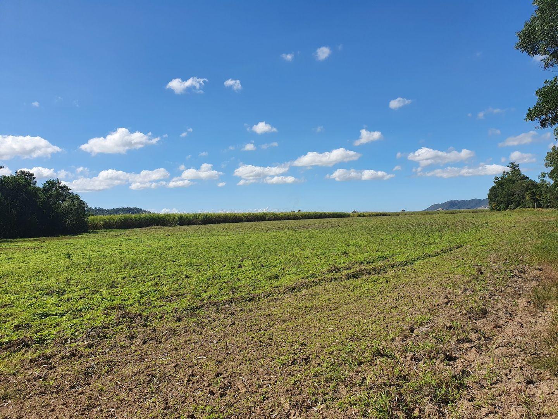50950 Bruce Highway, Bemerside QLD 4850, Image 2