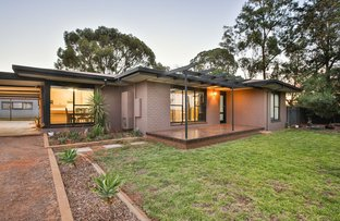 Picture of 25 McCarthys Road, Merbein South VIC 3505