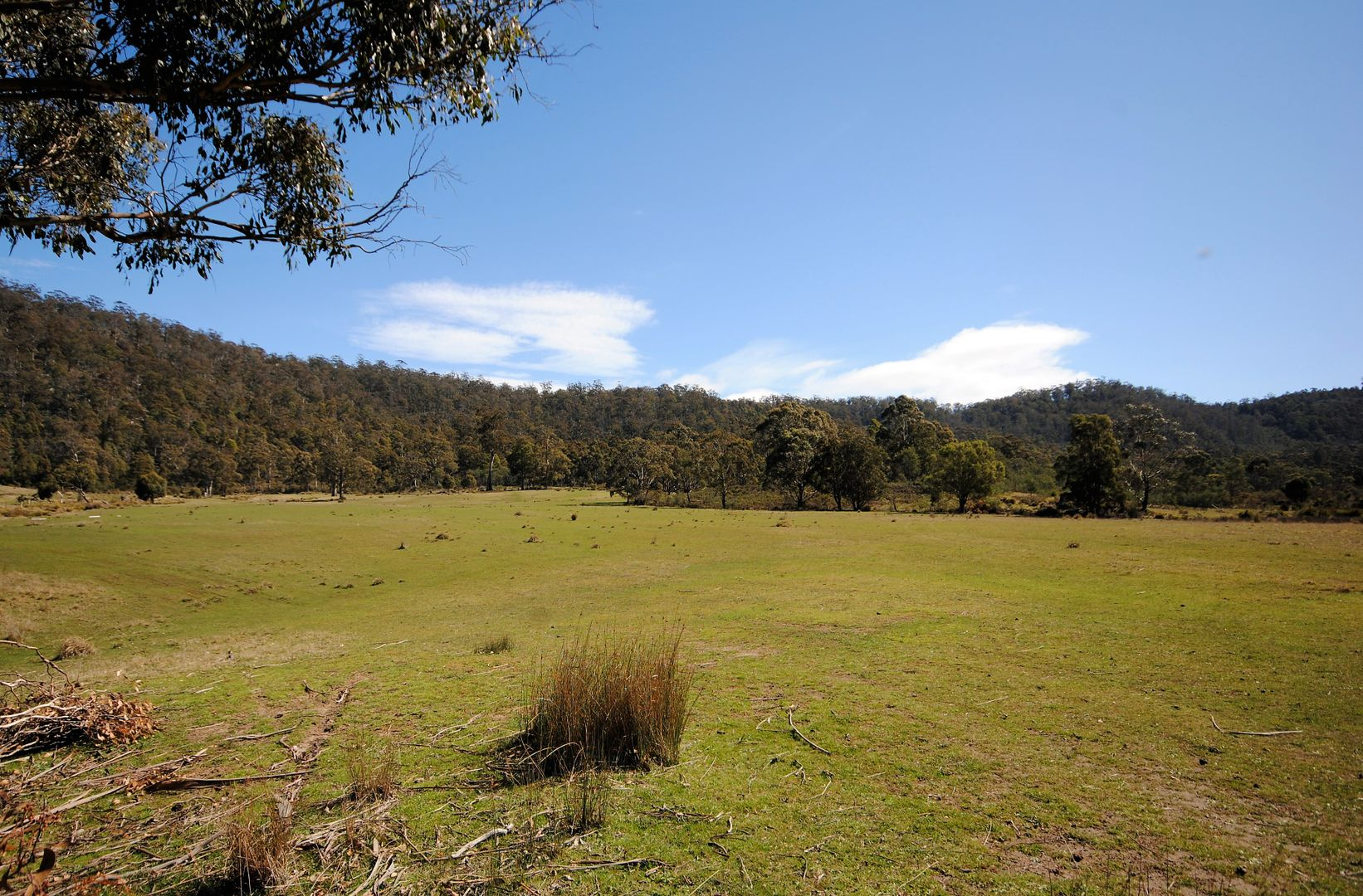 Lot 1/35 Mosquito Valley Road, Levendale TAS 7120, Image 1