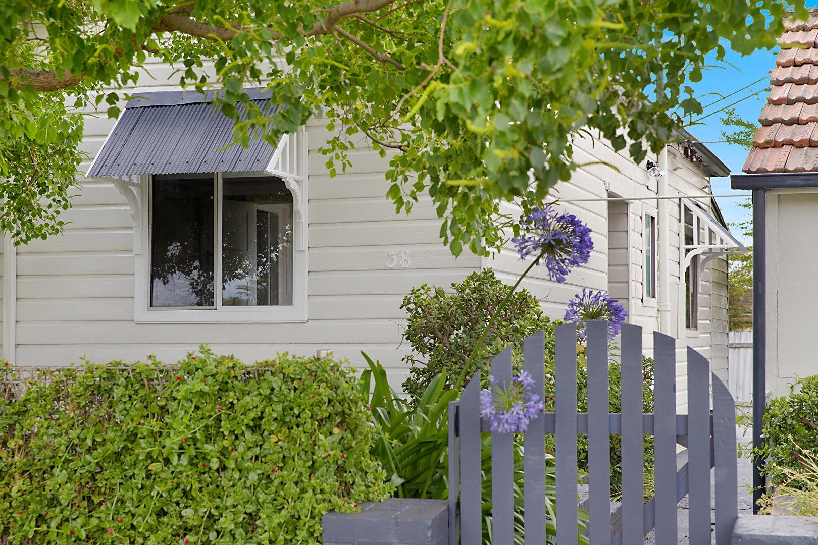 38 Upfold Street, Mayfield NSW 2304, Image 0