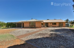 Picture of 11 Old Stewart School Road, Red Cliffs VIC 3496
