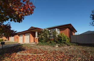Picture of 495 Anson  Street, Orange NSW 2800