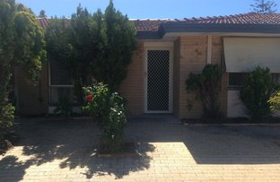 Picture of 7/68-70 Barbican Street, Shelley WA 6148