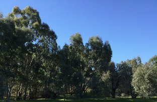 Picture of 00 Shearing Shed Road, Carapooee West VIC 3477