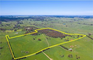 Picture of 1696 Abercrombie Road, Black Springs NSW 2787