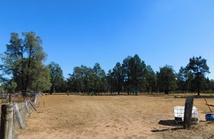 Picture of 168 Namoi St, Baradine NSW 2396