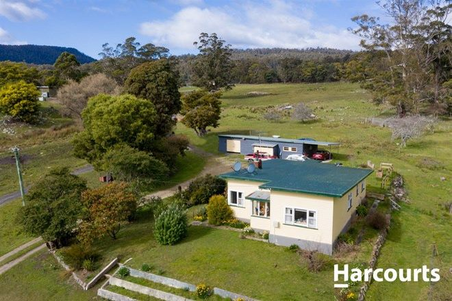 Picture of 13363 Highland Lakes Road, GOLDEN VALLEY TAS 7304
