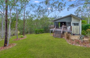 Picture of 24 Stockwhip Place, Mount Crosby QLD 4306