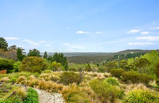 Picture of 100 Tableland Rd, Wentworth Falls NSW 2782