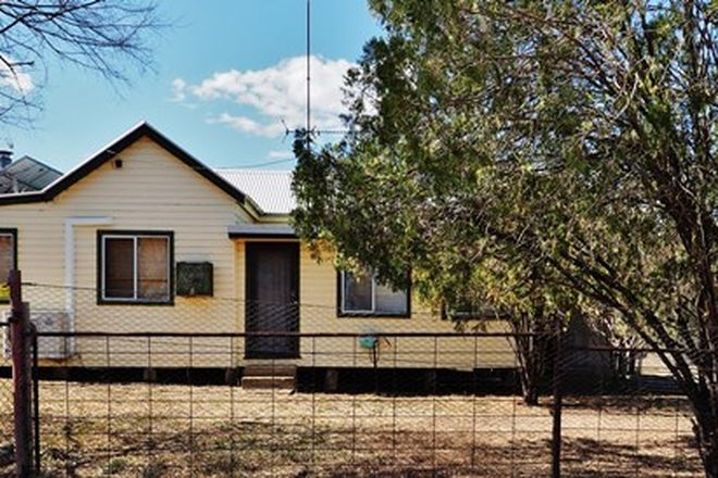 Picture of 12 Allan Cunningham Way, WARIALDA RAIL NSW 2402