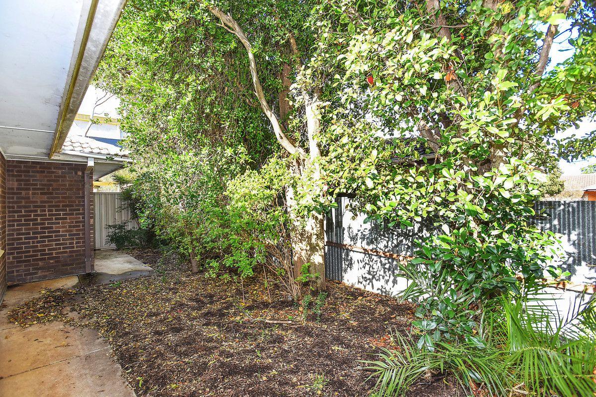 3/4 Forbes Street, Pasadena SA 5042, Image 14