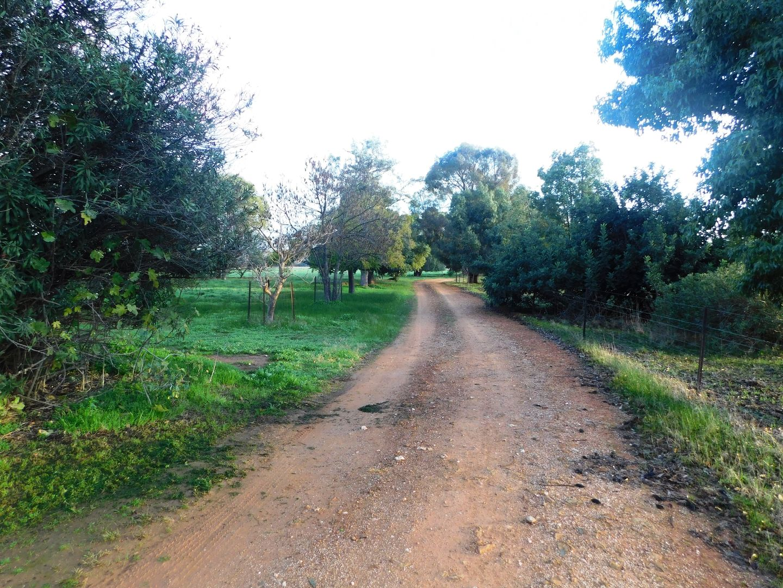 70 Glenview Road, Howlong NSW 2643, Image 1