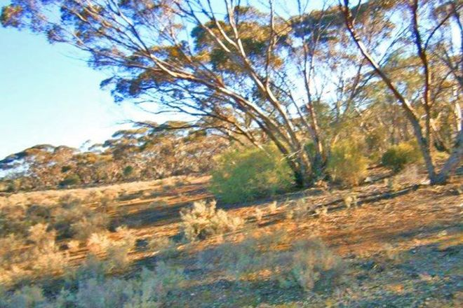 Picture of Section 113 Sturt Highway, BLANCHETOWN SA 5357