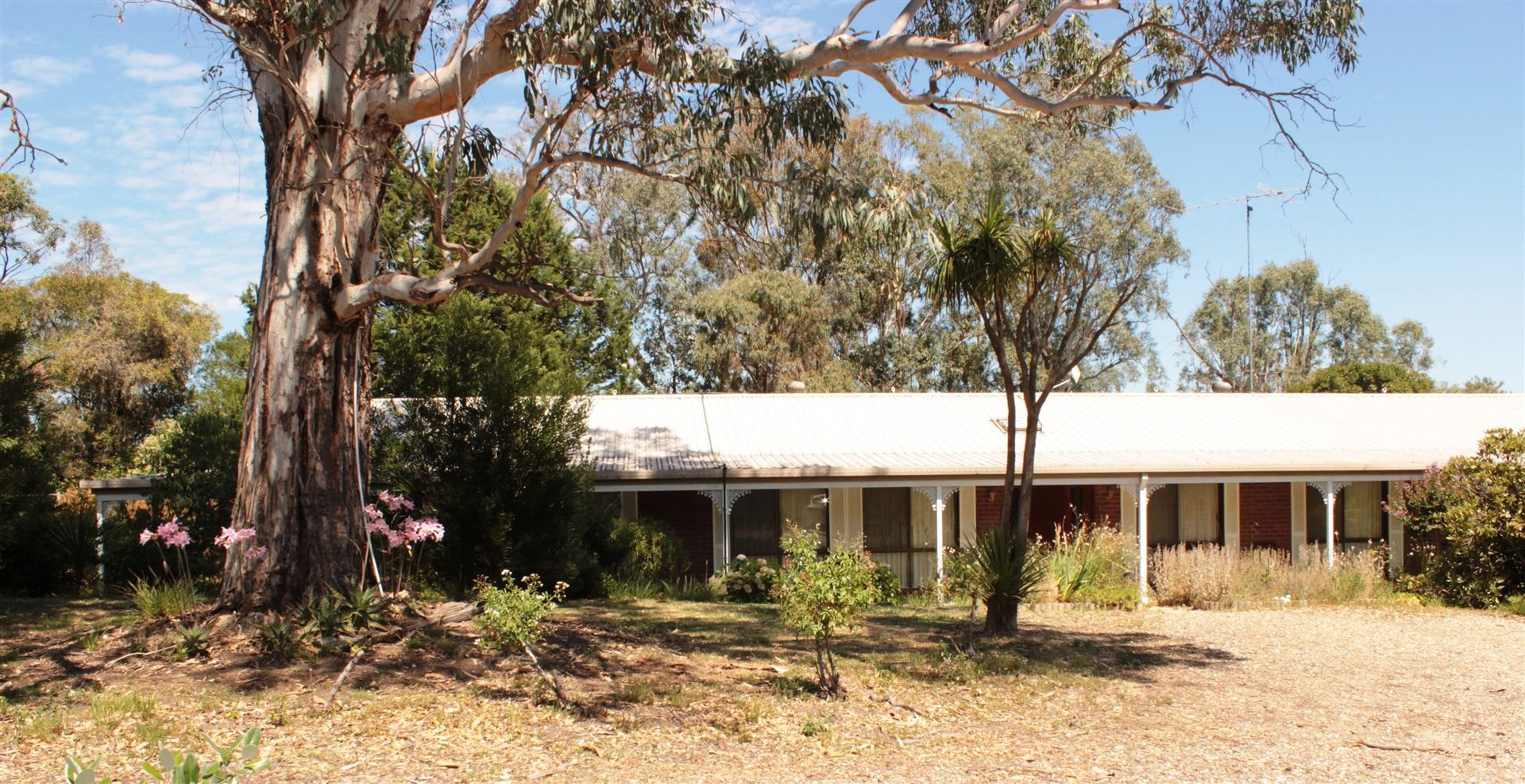 39 Connellys Creek Road, Acheron VIC 3714, Image 2