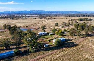 Picture of 92 Davis Road, Narrabri NSW 2390
