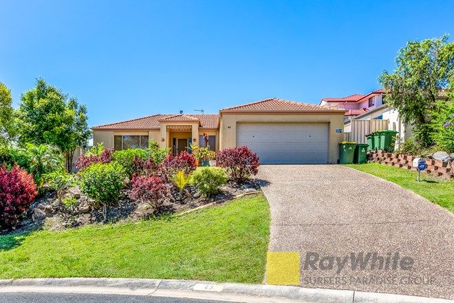 Picture of 43 Kite Circuit, ARUNDEL QLD 4214
