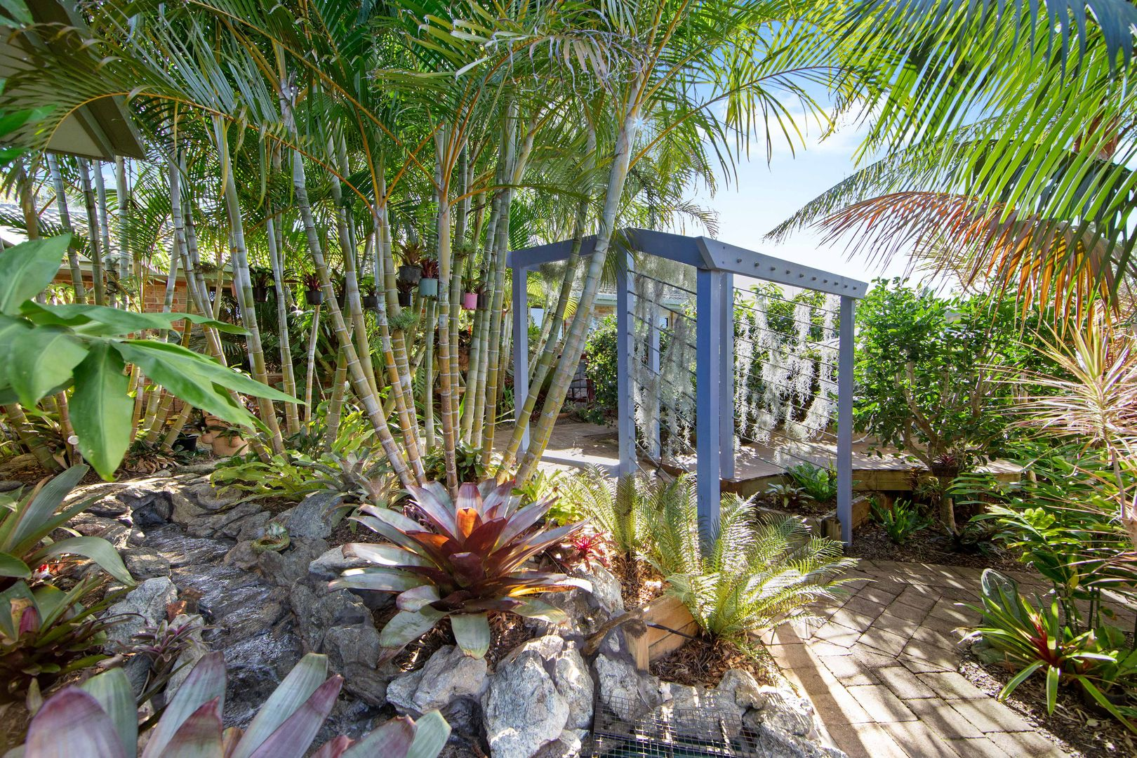 31 Emily Avenue, Port Macquarie NSW 2444, Image 1