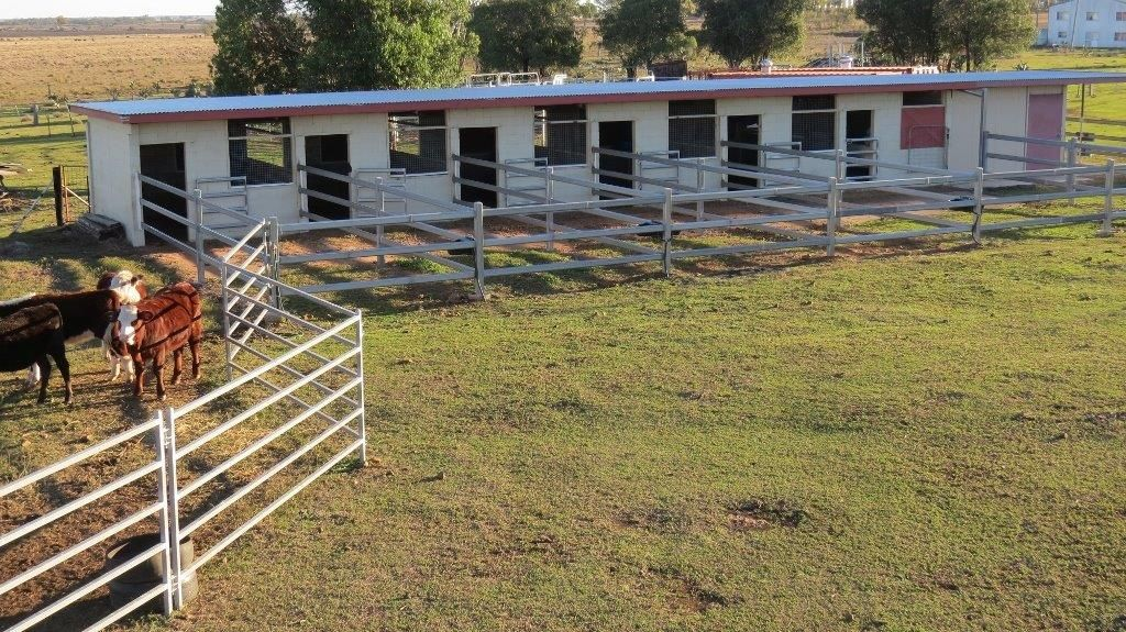 34 ACRES BRICK HOME, STABLES, Dalby QLD 4405, Image 2
