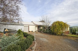 Picture of 37 Miller Street, Dumbalk VIC 3956