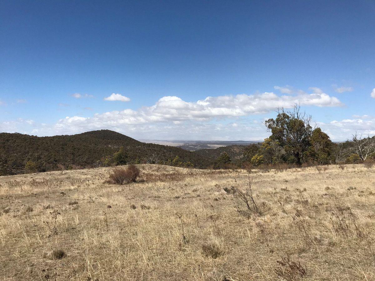 Dry Plains Road, Wambrook NSW 2630, Image 0