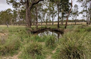 Picture of Reedy Creek Road, Thanes Creek QLD 4370