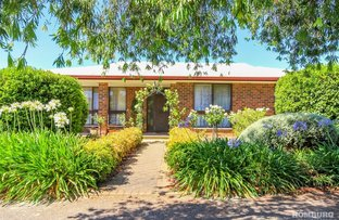 Picture of 7 Jonathan Avenue, Nuriootpa SA 5355