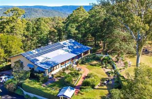 Picture of 389 Corks Pocket Road, Maleny QLD 4552