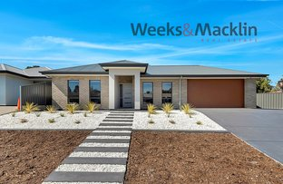 Picture of 17 Melrose Street, Modbury Heights SA 5092