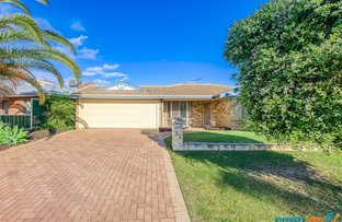 Picture of 31 Cottage Park Way, Kewdale WA 6105